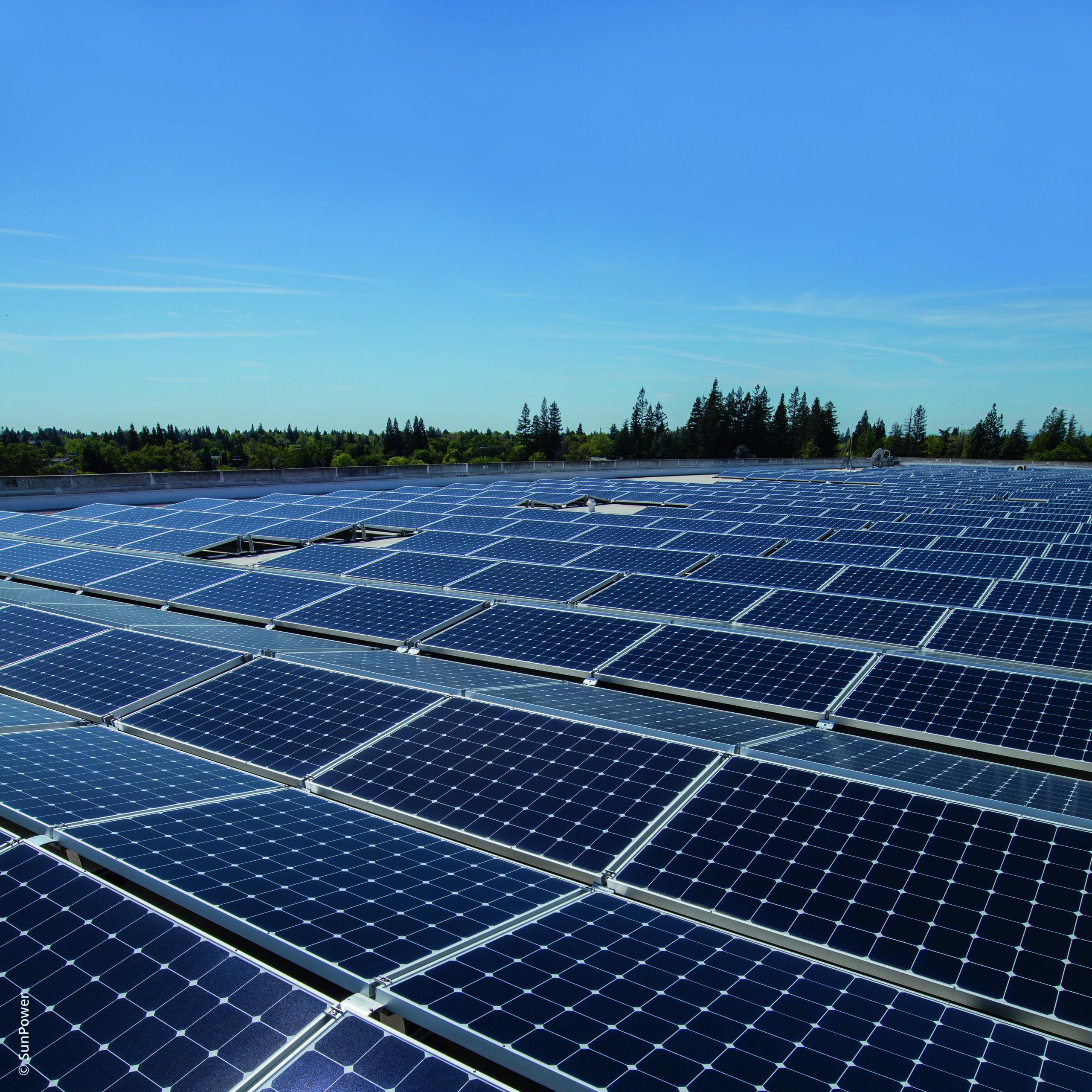 Fotovoltaico utility scale: crescita a doppia cifra nel 2019