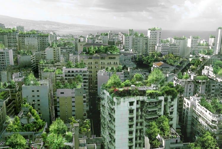 Tetti verdi e fotovoltaico: anche New York punta a essere una città sempre più ecologica